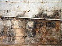 10 Tips for Finishing a Basement | DIY Basement Ideas - Remodeling, Finishing, Floors, Bars & Waterproofing | DIY