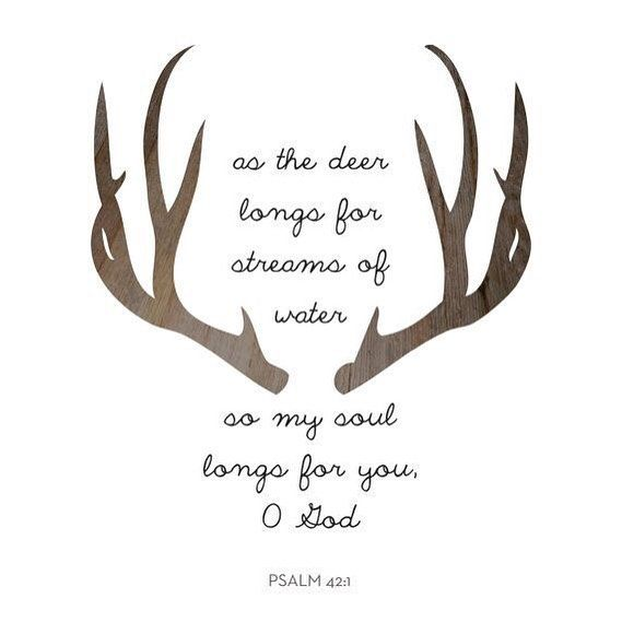 As the deer pants for streams of water so my soul pants for you my God. Psalm 42:1 NIV by daily_bibleverses