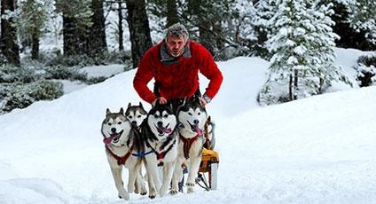 Sulla neve con gli Husky. A day with the Huskies on www.italytraveller.com