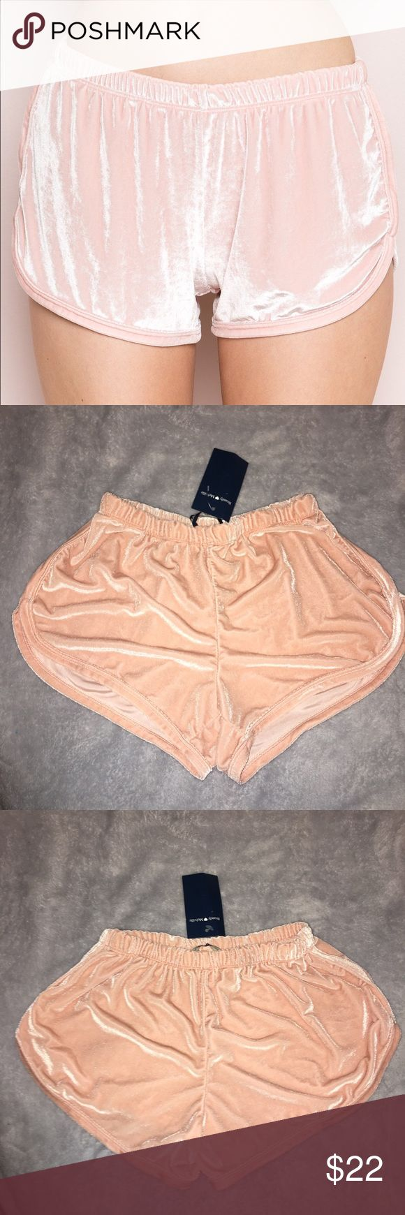 24 HR FLASH SALE Brandy Melville Velvet Lisette BNWT • Fits XS-M Perfect Condition *Sorry for bad lighting true color shown in first pic* Price is Firm ❣️ Brandy Melville Shorts