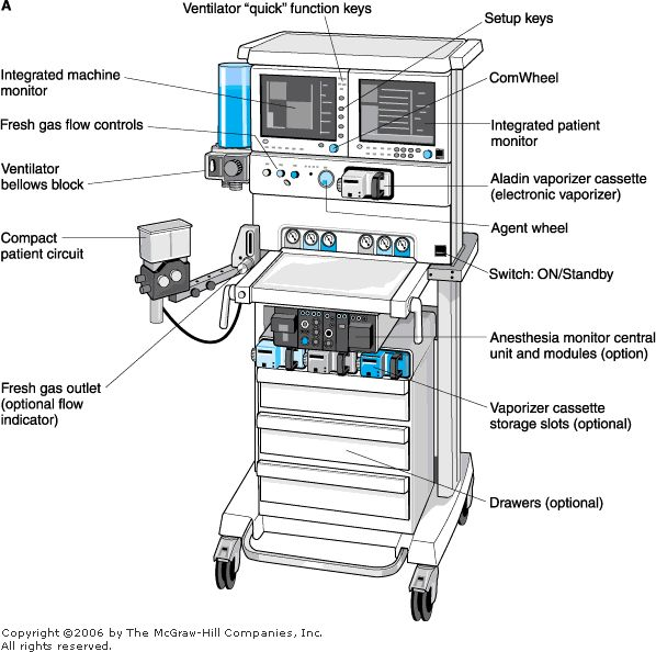 equine anesthesia machine