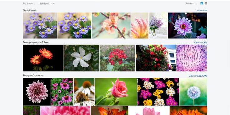 Flickr's New Update May Make It the Best Online Photo Storage Solution
