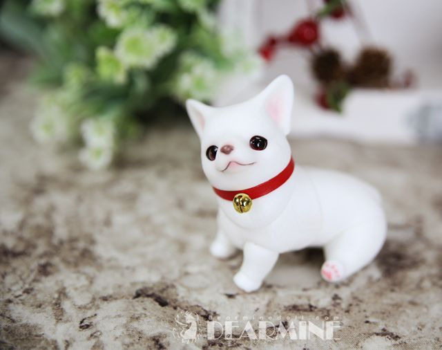 GORGI The Dog Doll / Dearmine   Dolk Station - Online bjd shop