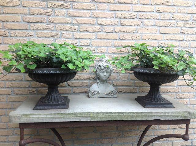 Double low urns