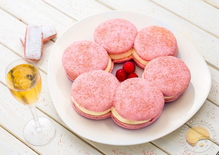 Le Macaron rémois : Macaron géant aux biscuits roses, mousse au Champagne et cœur coulant à la framboise - Sucre d'Orge et Pain d'Epices