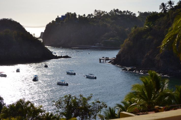 1000 images about puerto vallarta on pinterest agaves