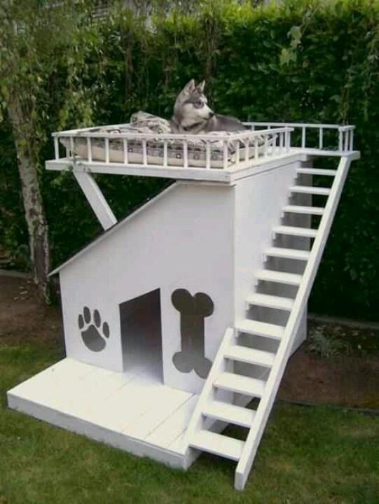 Coolest dog Crib!!