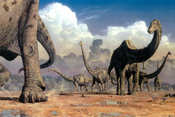 The rate of carbon emissions is higher than at any time in fossil records stretching to the age of the dinosaurs, according to a study.