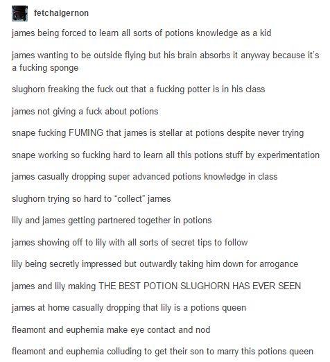 25 Best Ideas About James Potter On Pinterest Harry