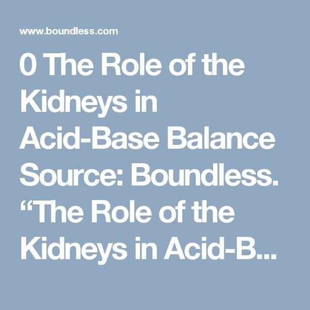 "The Role of the Kidneys in Acid-Base Balance  Source: Boundless. ""The Role of the Kidneys in Acid-Base Balance."" Boundless Anatomy and Physiology Boundless, 07 Nov. 2016. Retrieved 23 Jan. 2017 from https://www.boundless.com/physiology/textbooks/boundless-anatomy-and-physiology-textbook/body-fluids-and-acid-base-balance-26/acid-base-balance-248/the-role-of-the-kidneys-in-acid-base-balance-1219-9206/"