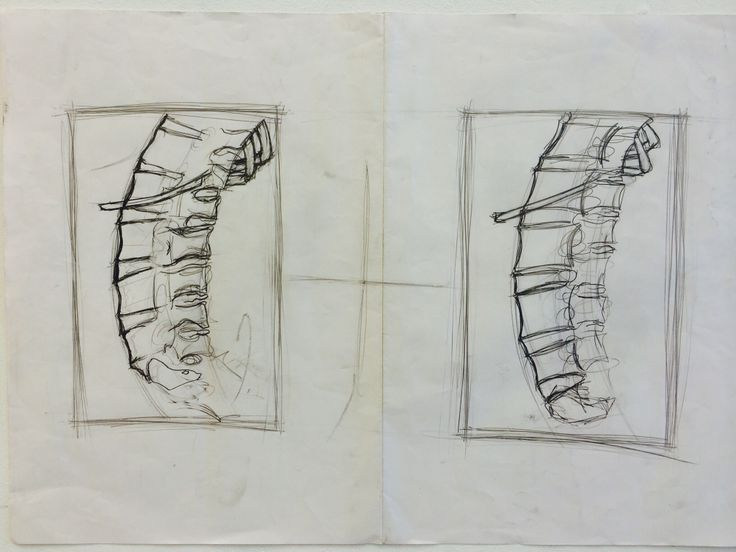 This is a spine a unfinished piece with many techniques used such as pencil on the paper without taking it out, hard and soft use of graphite stick and pencil and rubber to clear the dis necessary pencil and graphite lines.