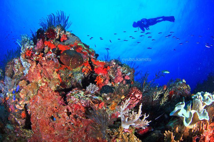 amazing UW bolsel south bolaang mongondow regency north sulawesi - indonesia