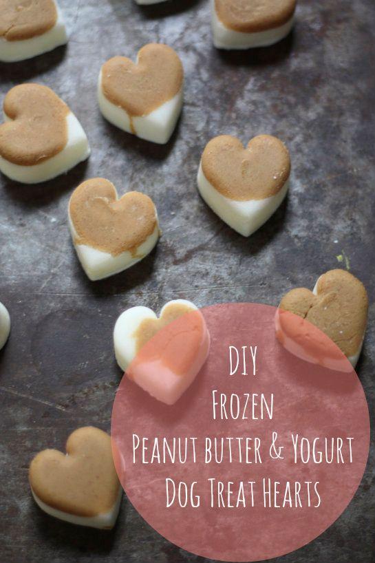 DIY Heart Shaped Peanut Butter & Yogurt Dog Treats