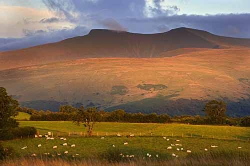 The Brecon Beacons National Park - Penyfan at Sunset from Mynydd Illtyd Common
