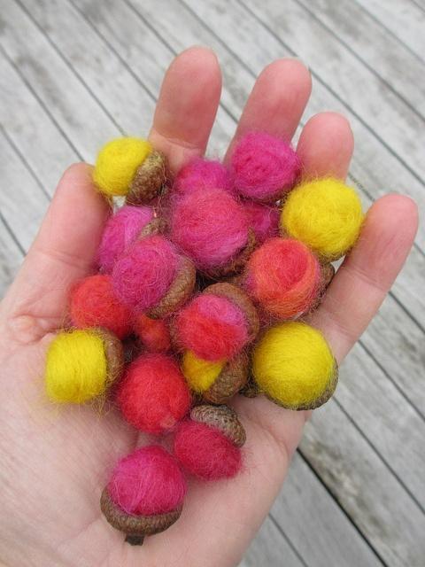 acorns by Nicole de Boer, via Flickr