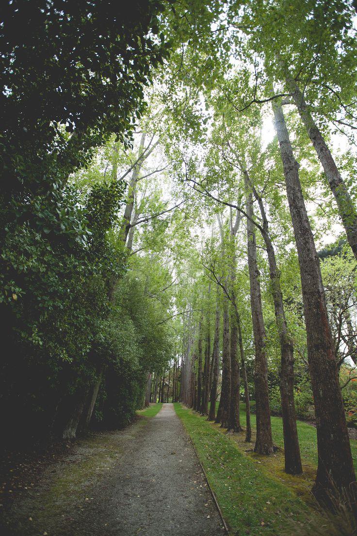Queens Park, Invercargill #invercargill #nz #travel