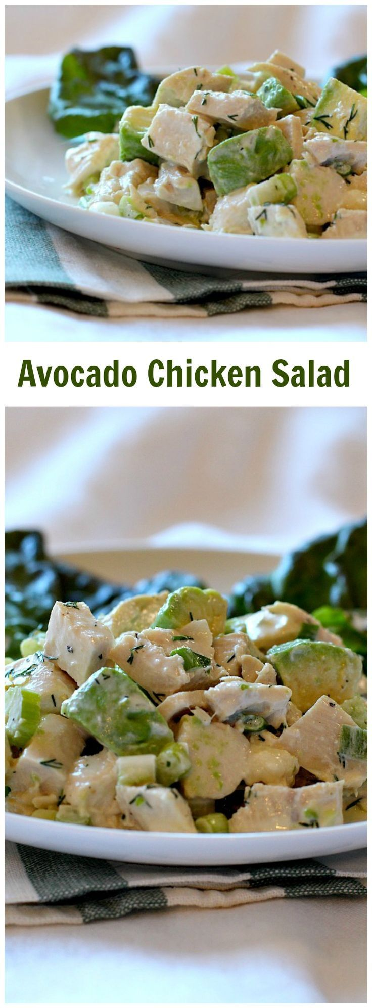 A thick creamy dressing made with mayo and avocado makes this a unique and crazy good Chicken Salad Recipe. Crunchy with celery and with just enough rice vinegar for excitement. #SundaySupper