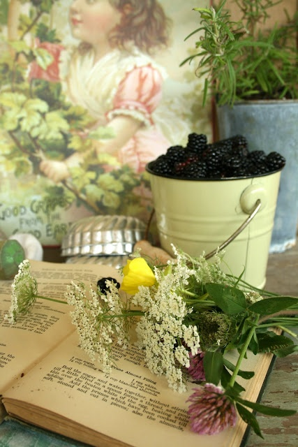 .Dreams, Shabby Chic, Ivy House, My Heart, Ana Rosa, Book Flower, Blackberries, Purple Home, Country