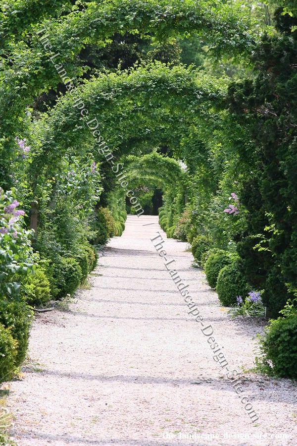 Garden Walkway Ideas 80 best landscaping ideas images on pinterest | landscaping ideas