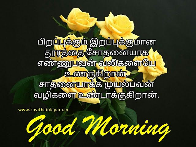 Good Morning In Tamil Good Morning Quotes Love Good Morning Quotes Morning Quotes