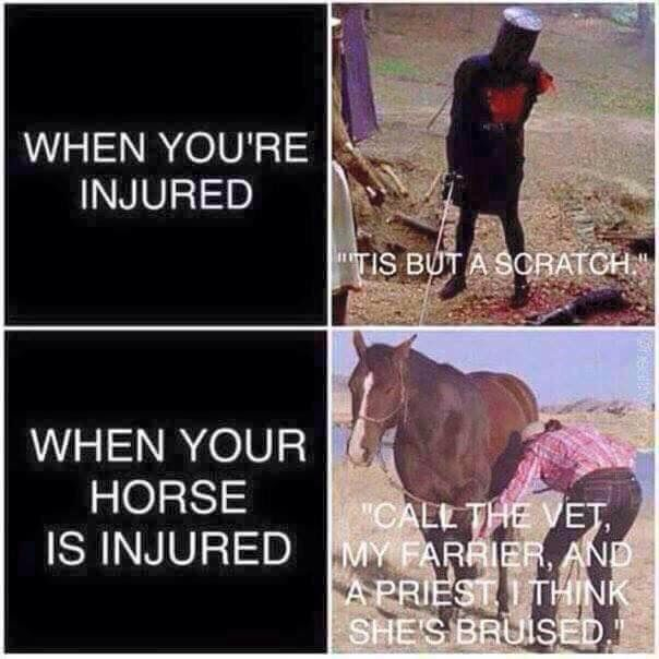 When you're injured vs your horse