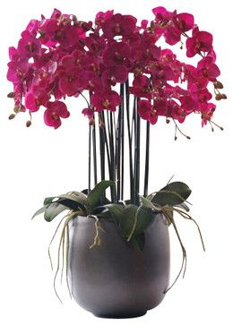 Phalaenopsis Orchid In Pot Flower Arrangement traditional artificial flowers