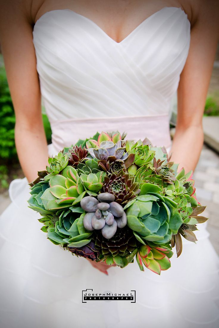 This bride bouquet shows mini and medium sized succulents for Bouquet hotel