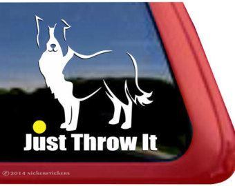 Just Throw It - DC470SP5 - High Quality Border Collie Window Decal Sticker