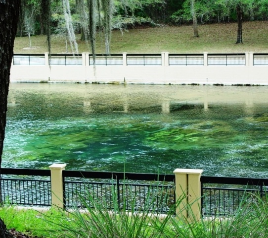 Landscape Lighting Ocala Fl: 19 Best Fabulous Florida Springs Images On Pinterest