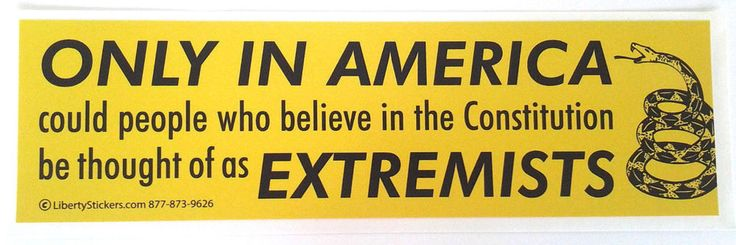 ONLY IN AMERICA COULD PEOPLE WHO BELIEVE  Anti Hillary / Obama Bumper Sticker L