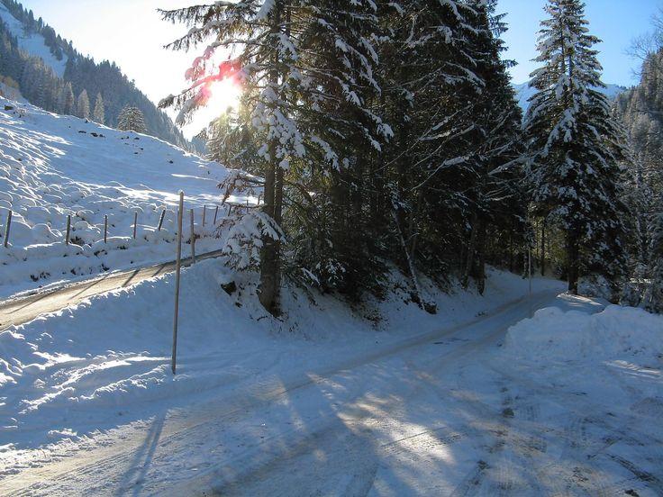 Ski de randonnée à La Para depuis L'Etivaz et le vallon de l'Eau Froide puis le col de Seron  La Para, un sommet que j'ai appris à connaitre avec le drame en 2002 de  Franziska Rochat-Moser qui avait gagnée le marathon de New-York en 1997. Je ne faisais pas de ski de randonnée à cette époque mais la célébrité de son mari avait rendu ce drame célèbre.  https://www.transpiree.com/randonnee/etivaz_eau_froide_la_para/