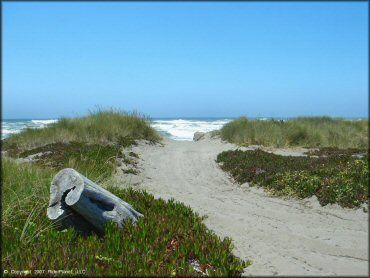 Samoa sand dunes  in California...I was born and raised in sacramento, but humboldt will always be my home. I miss it so much and can't wait to go back