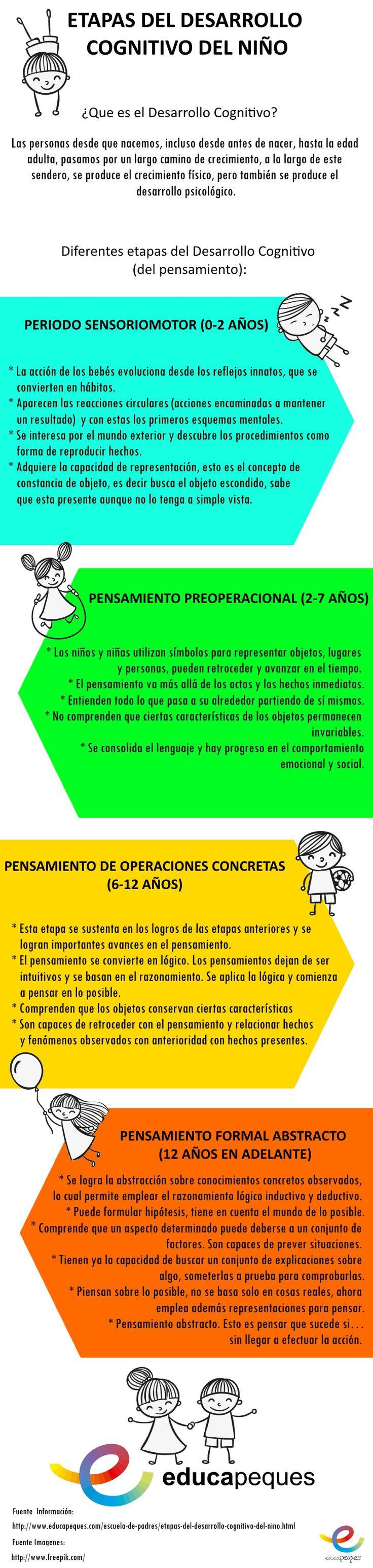 Infografías educativas. Etapas del desarrollo del niño
