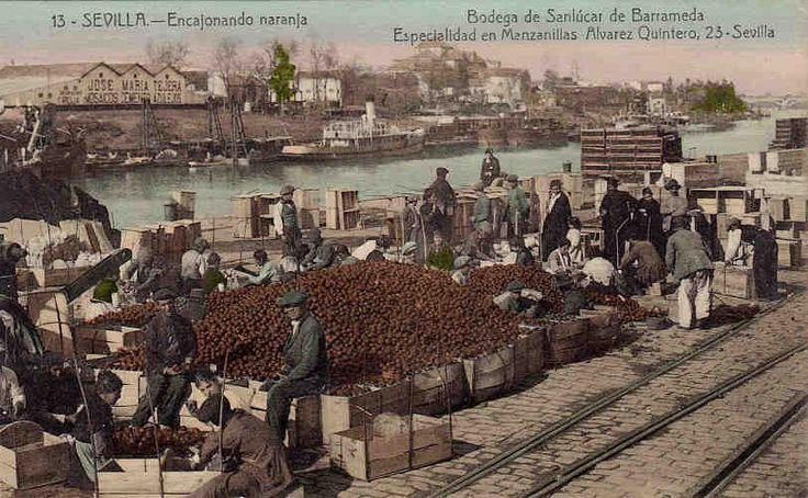 Estibando cajas de naranja frente al convento de los Remedios