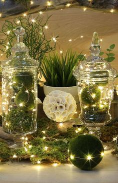 Creative String Light Idea  Warm white LED String Lights are filling Apothecary jars along with the artificial Mossy Ball ornaments and also lying along the top of a moss styled table setting. The copper wire allows the lights to bent in the direction you want them to go.