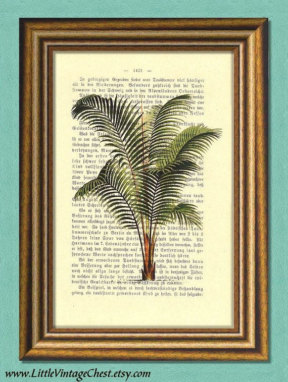 PALM TREE  Dictionary Art Print  Botanical by littlevintagechest, $7.99