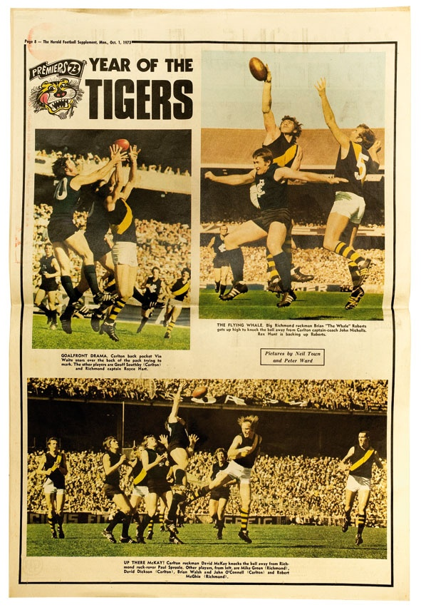 135 best Richmond Football Club - The Tigers images on ...