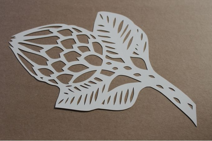 Protea Paper Cutout by Friday Revolution on hellopretty.co.za