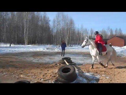 Белая радость. Занятия на лошади март 2016