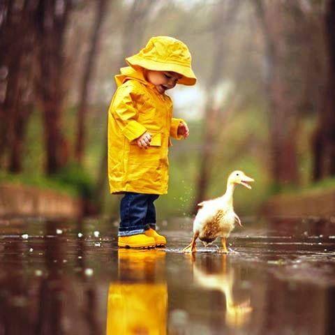 rainy day..