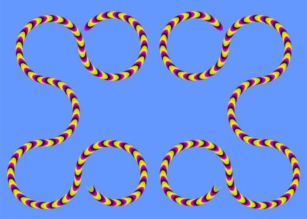 оптические иллюзии: змеи