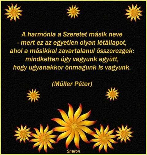 Müller Péter idézete a harmóniáról. A kép forrása: Sharon