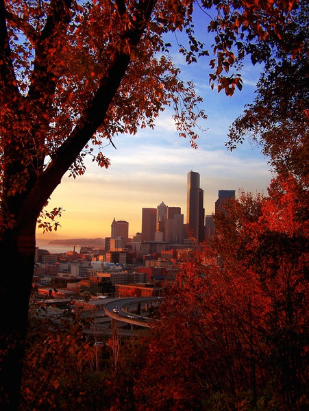Seattle Through Autumn