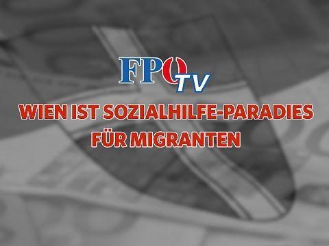 Wien ist Sozialhilfe-Paradies für Migranten!