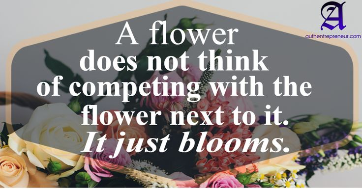 Maybe if we stop competing and just concentrate on what we want, we'll bloom a lot sooner :-) http://tracklix.com/a105