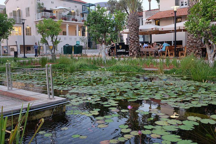 Антипедагогика — Маленькая Италия в Тель-Авиве