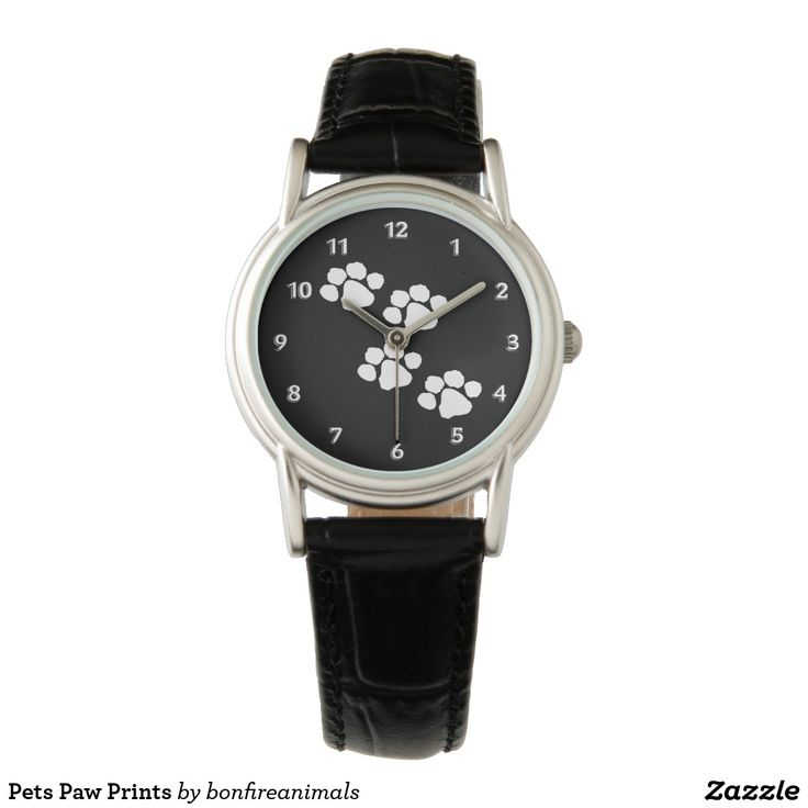 Pets Paw Prints Watch It's always some time for cats and dog kisses