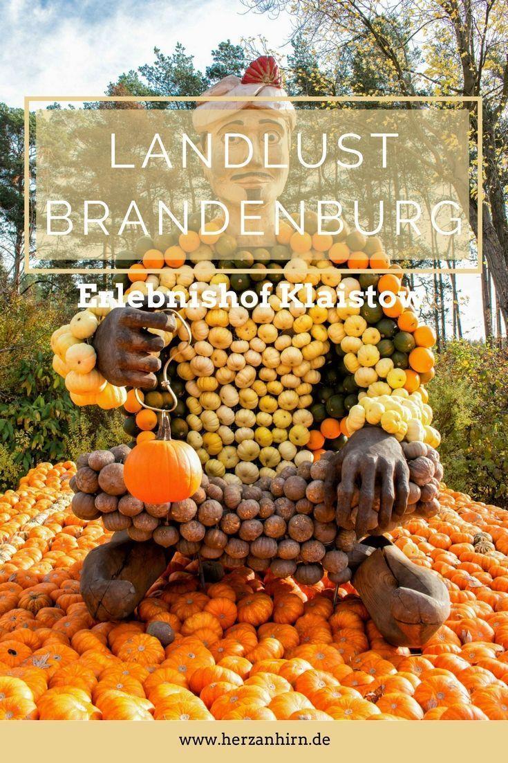 Landlust Brandenburg/ Erlebnishof Klaistow im Herbst zur Kürbis-Zeit in der Nähe von Berlin im Fläming perfekt für einen Ausflug am Wochenende mit der Familie