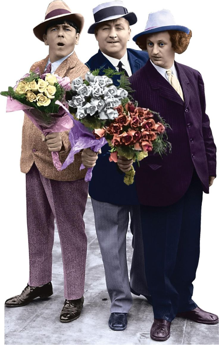 555-Three-Stooges---Flowers.jpg (975×1536)