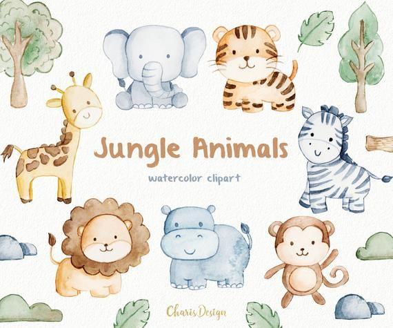 Jungle Animals Watercolor Clip Art Baby Jungle Animals Watercolor Nursery Animals Baby Animal Drawings